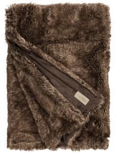 plaid brown bear