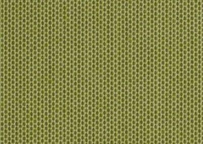 sunbrella solid 3970 lichen