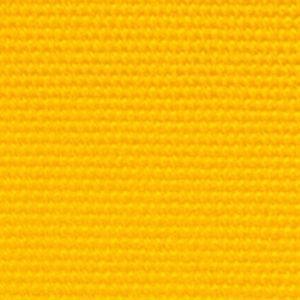 49201 | sunflower